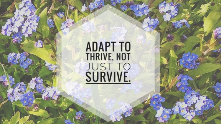 "A background of blue forget-me-nots with the words ""adapt to thrive, not just to survive."""