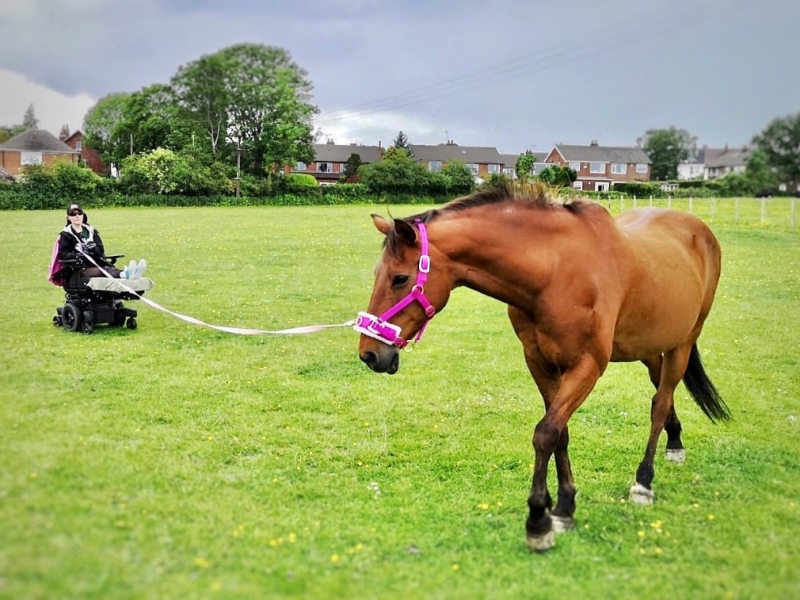 A photo of a girl (Holly) in an electric wheelchair with elevated legs, lunging a light bay horse in a grass field.